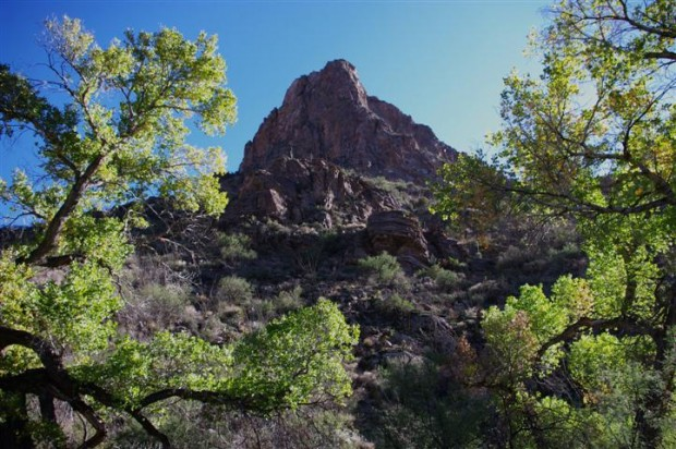 Pima Canyon bottom