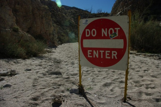 One of the washes along the canyon hike. We entered, warily.