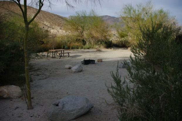 A campsite at Agua Caliente: a nice desert oasis.