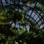 Inside the Botanical Building.