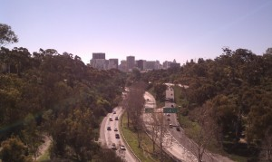 Balboa Park: totally SD. Downtown: not so much.