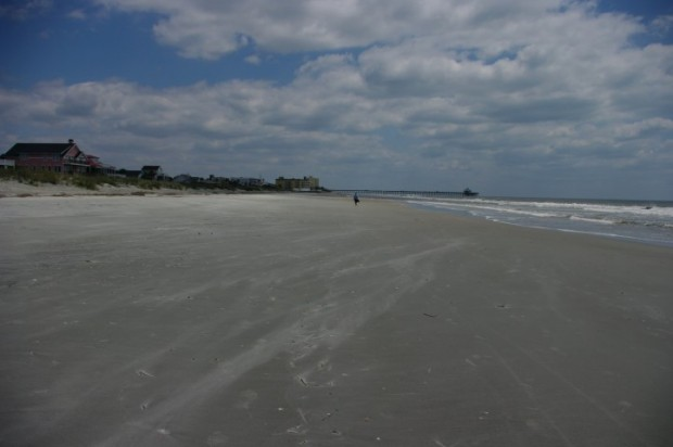 From Lisa: Folly Beach is huge.