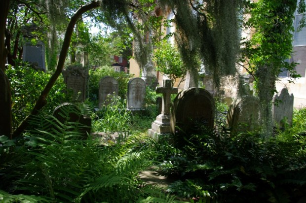 The overgrown Unitarian cemetery.