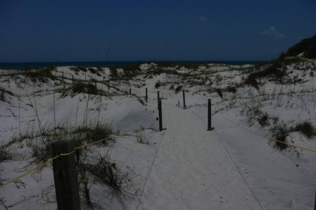 A path through the dunes to the beach.