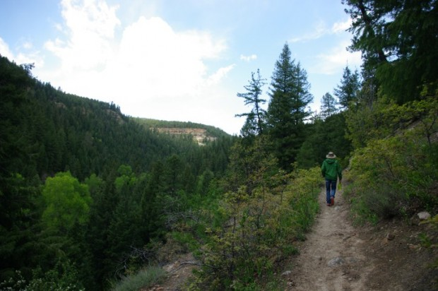The Colorado Trail starts in Durango -- from here you can hike all the way to Denver.