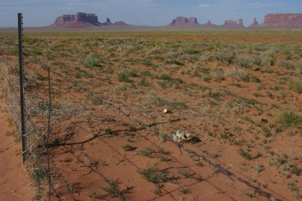 Monument Valley roadside.