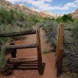 Livestock gate.