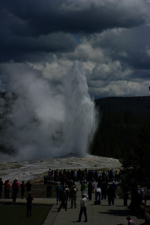 Old Faithful starts to erupt.