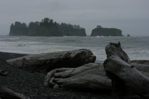 Rialto Beach: sounds like it should be warm and sunny, right?