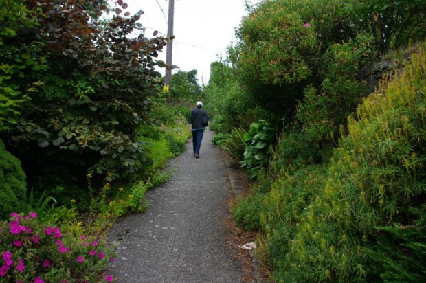 People have amazing gardens -- walking down the sidewalk is like strolling through a botanical garden.