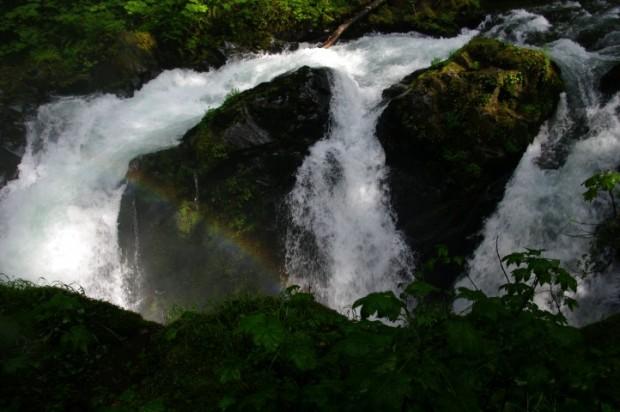 A rainbow in Sol Duc Falls.