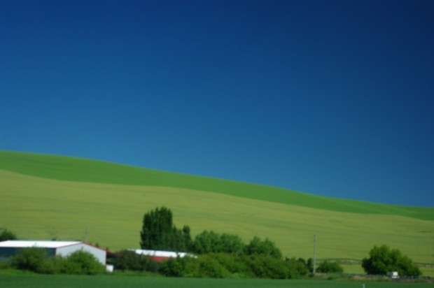 The Walla Walla countryside.