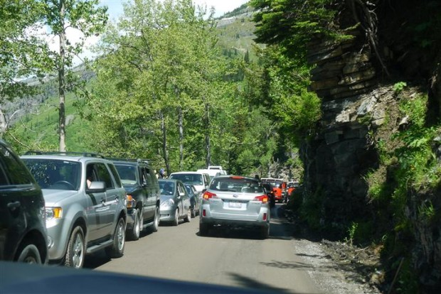 Paul got this shot of traffic on the Going to the Sun Road -- my worst nightmare kind of drive.
