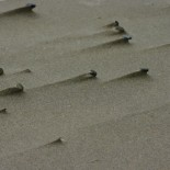 The persistent wind created these pebble ridges.