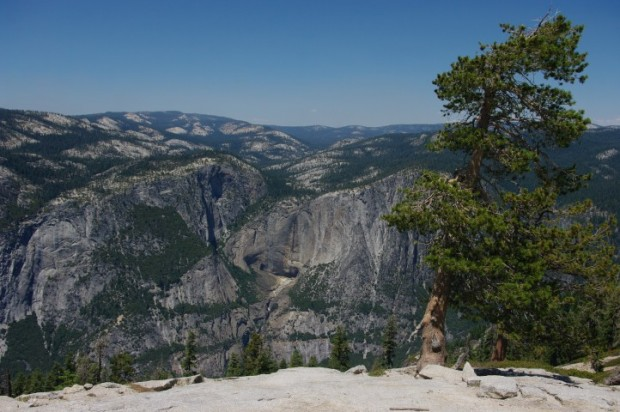 Yosemite Falls should be right in the center of this picture...if we weren't in a major drought, that is.