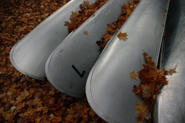 Leaf-covered canoes.